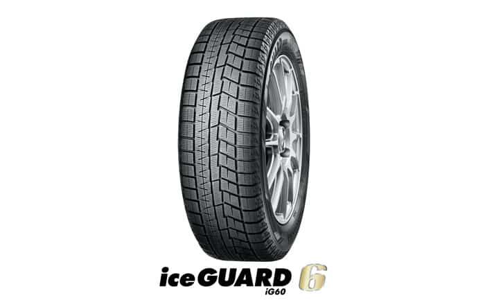 ice GUARD6