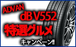 [特別価格]ADVAN dB V552グルメキャンペーン
