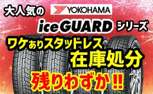 【残りわずか】大人気ヨコハマアイスガードシリーズ!